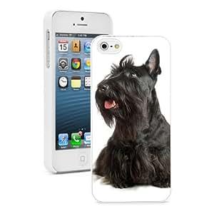 Apple iPhone 5c Hard Back Case Cover Color Black Scottish Terrier Puppy Dog (White)