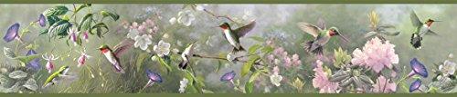 Chesapeake HTM48532B Ruby Moss Hummingbird Garden Wallpaper Border (Hummingbirds Wallpaper Border)
