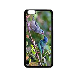 The Kiss Of Bird Hight Quality Plastic Case for Iphone 6