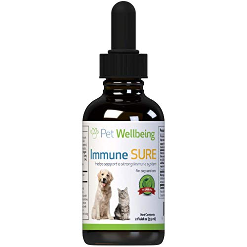 immune sure for dogs