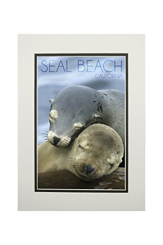 Seal Beach, California - Sea Lions Cuddle (11x14 Double-Matted Art Print, Wall Decor Ready to ()