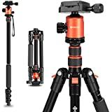 "Geekoto 58"" Ultra Compact and Lightweight Aluminum Tripod with 360° Panorama Ball Head, Camera Tripod for DSLR, Monopod, Tripod for OSMO, Ideal for Vlog, Travel and Work"