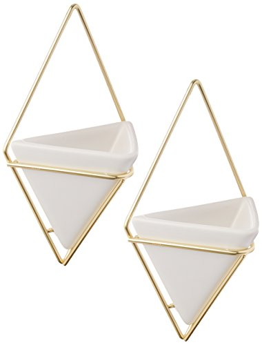 Umbra Trigg Hanging Planter Vase & Geometric Wall Decor Container - Great For Succulent Plants, Air Plant, Mini Cactus, Faux Plants and More, White Ceramic/Brass (Set of 2) (Decor Wall)