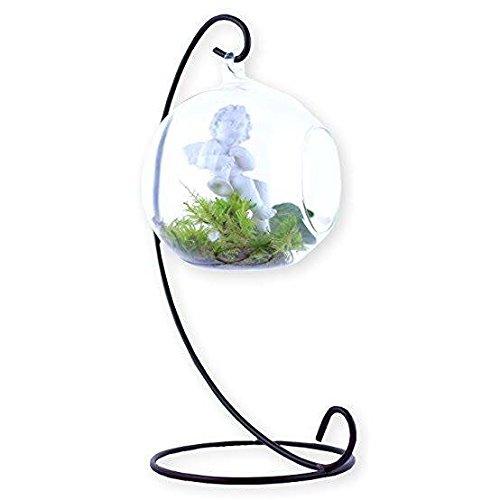 Barlin Gallery, LLC Glass Plant Vase Terrarium Globe with Metal Stand, Elegant and Decorative with Free Urban Gardening eBook