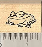 Wily Frog Rubber Stamp