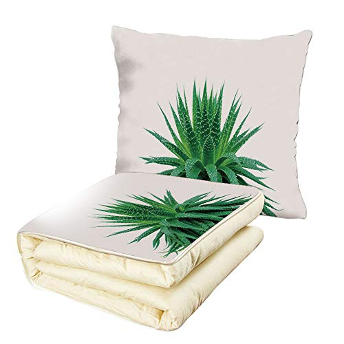 - Quilt Dual-Use Pillow Plant Medicinal Aloe Vera with Vibrant Colors Indigenous Species Alternative Natural Remedy Multifunctional Air-Conditioning Quilt Fern Green