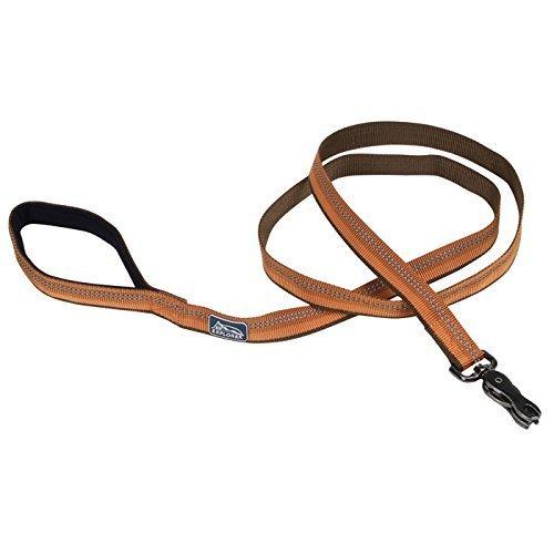 Coastal Pet Products, Inc. 36906 6` x 1 Inch K-9 Explorer Lead - Campfire Orange