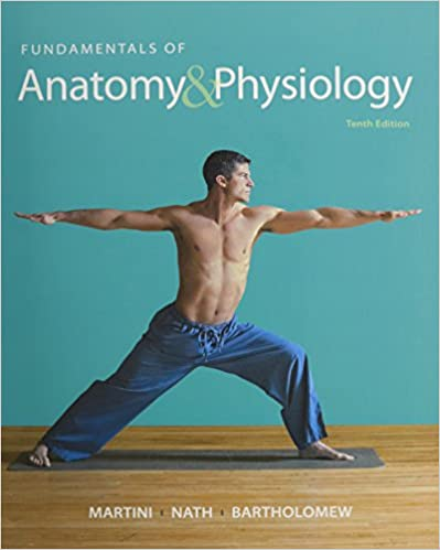Amazon.com: Fundamentals of Anatomy & Physiology, Visual Anatomy ...