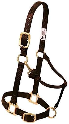 nal Adjustable Nylon Horse Halter, Brown,  1