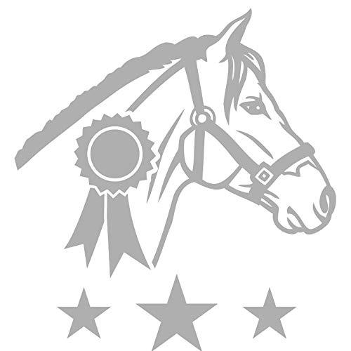 Horse ribbons awards