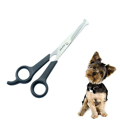 Professional Pet Grooming Scissor with Round Tip Stainless Steel Dog Eye Cutter for Dogs and Cats, Professional Grooming Tool, Size 6.70