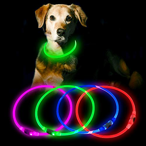 HiGuard LED Dog Collar USB Rechargeable Glowing Pet Collars Lighted Up Safety Necklace Glow in the Dark for You & Your Dogs (Green) ()