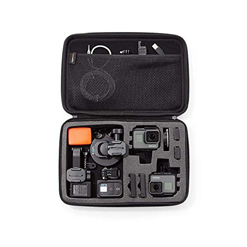 AmazonBasics Large Carrying Case for GoPro And Accessories