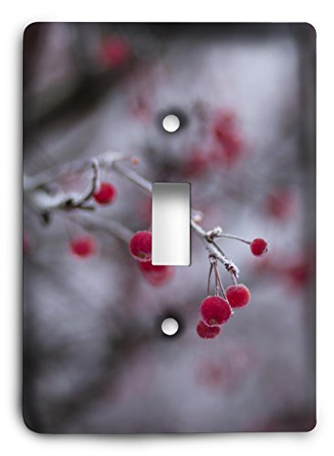 - holly berries 2 - Light Switch