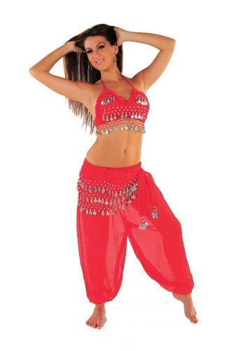 Miss Belly Dance Bellydancing Halloween Costume Set | Harem Pants, Halter Top & Hip Scarf | The Belly Dancer (Small/Medium, Red/Silver) by Miss Belly Dance