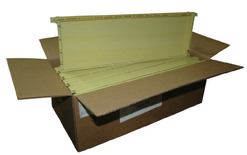 Mann Lake PF126 10-Pack Standard Wax Coated Plastic Frame, 6-1/4-Inch, (Plastic Frame Natural)