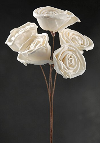White Sola Roses Wired Stems 5 flowers (Wired Stems)