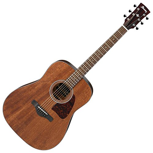 Ibanez AW54OPN Artwood Dreadnought Acoustic Guitar - Open Po