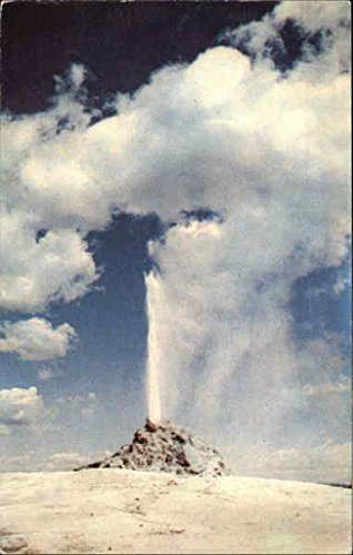 White Dome Geyser, Lower Geyser Basin Yellowstone National Park, Wyoming Original Vintage Postcard