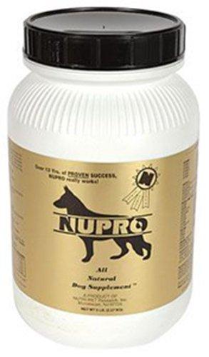 Amazon.com: NUPRO Gold 5 lb: Mascotas
