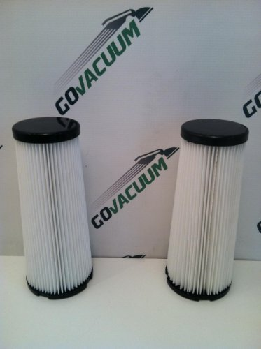 2 WASHABLE F1 HEPA FILTERS for DIRT DEVIL vacuums.
