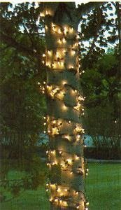 Kringle Traditions Clear Christmas Trunk Wrap Lights with 100 Lamps on Green Wire, 2