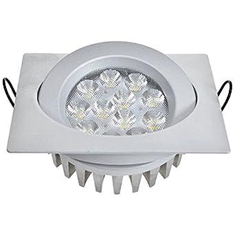 Guli TD36 Cibeles Luminaria LED con Driver Incluido, Luz Fría, 20 W, Plata, 129 x 129 x 56 mm.: Amazon.es: Iluminación