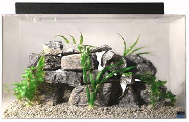 Seaclear 20-Gallon Fish Tank Combo