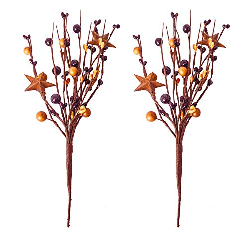 Star Flower Stem - OBI Pip Berry Metal Star Picks 2piece - 9inch Twigs Burgandy & Mustard Color Berries - Mini Artificial Plant Stem for Vases or Crafts - Country Primitive Floral Home Wedding Decor