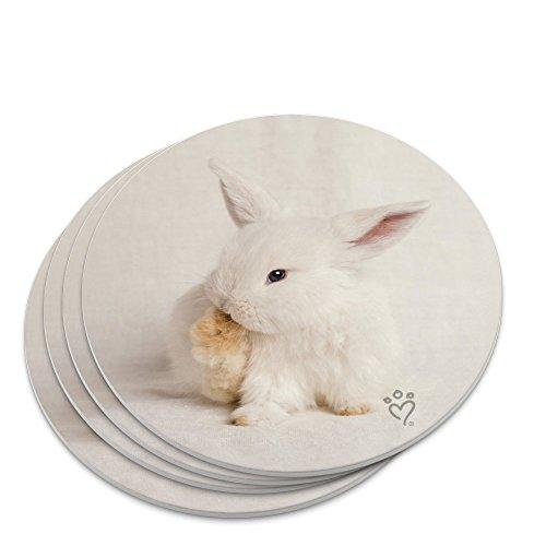- Lop Ears Miniature Bunny Rabbit Novelty Coaster Set