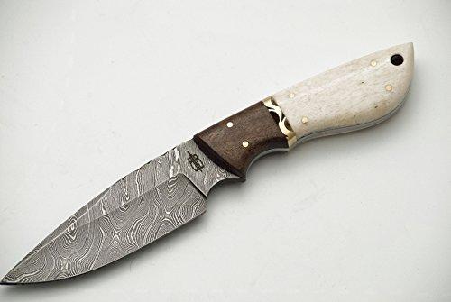 BucknBear Custom Handmade Fixed Blade Damascus Hunting Knife (Bone/Walnut handle)
