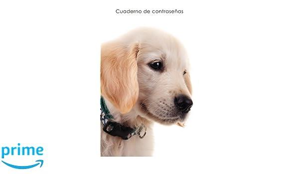... de direcciones y contraseñas en internet - Cubierta de perrito Golden Retriever (Cuadernos para los amantes de los perros) (Spanish Edition): Cuadernos ...