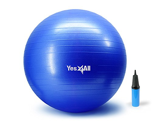 Yes4All 2000-lbs Anti Burst Stability Ball with Hand Pump (Q_Blue+Pump-65 cm)