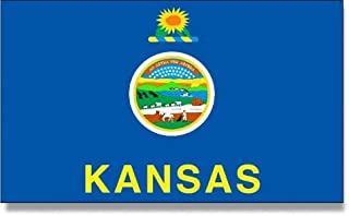 product image for 4x6' Kansas 2ply Polyester State Flag