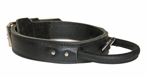 Dean and Tyler  SIMPLICITY+ , Dog Collar with Handle and Chrome Plated Hardware Black Size 86cm by 4cm Fits Neck 81cm to 91cm