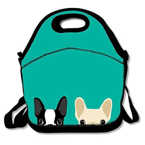 - Neoprene Reusable Insulated Lunch Tote Bag School Picnic Thermal Carrying Gourmet Lunchbox Container Organizer For Men, Women, Adults, Kids, Teens, Girls, Boys (Sneaky Boston Terrier & French Bulldog)