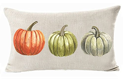 WePurchase Autumn Fall Y'all Beautiful Watercolor Hand Painted Red Green Grey Pumpkins Decoration Cotton Linen Decorative Home Sofa Living Room Throw Pillow Case Cushion Cover Rectangle 12x20 Inches -