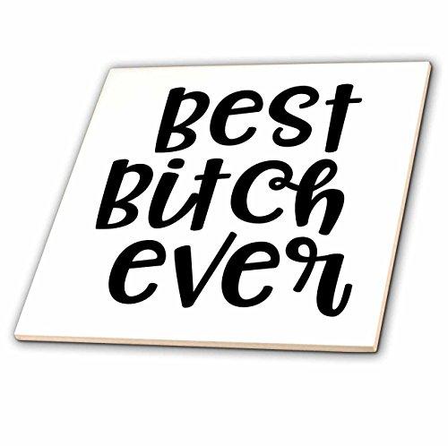 Bitches Tile - 3dRose Lenas Photos - Cute Sayings - Best Bitches - Best Friend Ever - Best Friend Gift - Best Friends - 8 Inch Ceramic Tile (ct_270934_3)