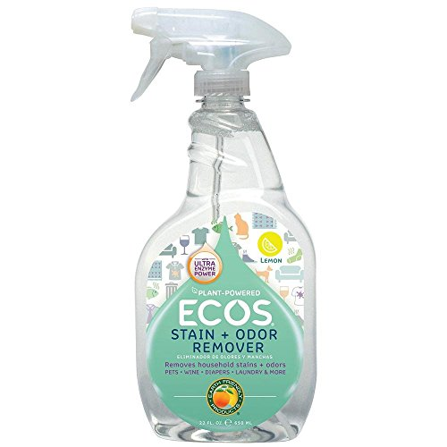 Earth Friendly Products Stain & Odor Remover, 22 oz