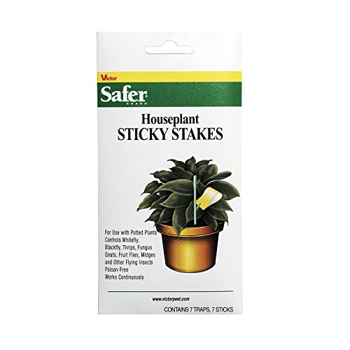 safer-brand-5025-houseplant-sticky-stakes-insect-trap-14traps