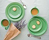 Fiesta 16-Piece Dinnerware Set | Meadow