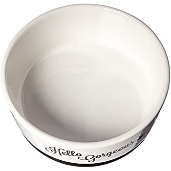 Pet Supplies Beautiful Ceramic Hello Gorgeous Dog Bowl