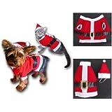 Sandy - Costume Noël pour chat