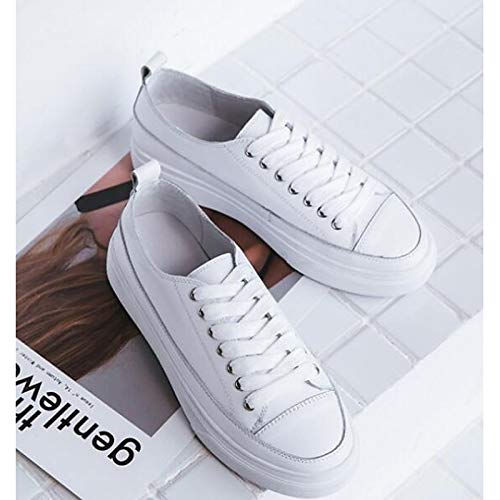 Sneakers Comfort Autunno Pelle Tacco Da mandorla Bovina White Donna Zhznvx Piatto Scarpe Bianco wHgqBgO