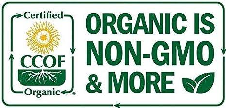 Amazon.com: Chlorella Powder 4oz Organic, Raw, Non-GMO 100 ...
