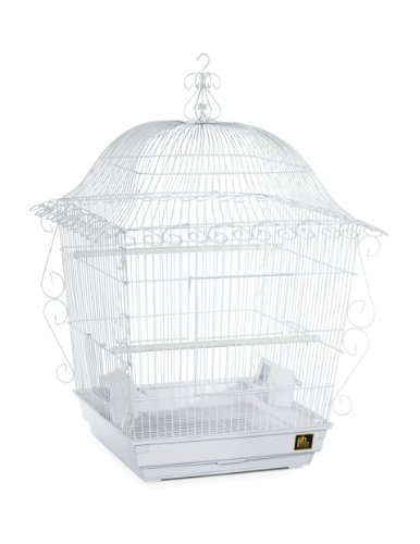 (Prevue Pet Products Jumbo Scrollwork Bird Cage 220W White, 18-Inch by 18-Inch by 25-Inch)