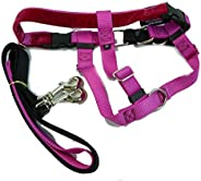 "2 Hounds Design PK 1SM RASP Freedom No-Pull Harness with Leash, (1"" Wide), Raspberry,"