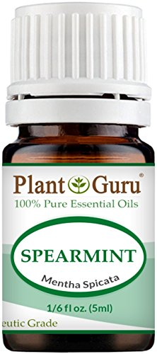 Spearmint Essential Oil 5 ml 100% Pure Undiluted Therapeutic