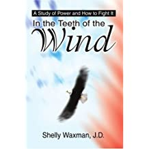 In the Teeth of the Wind: A Study of Power and How to Fight It