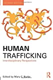 Human Trafficking: Interdisciplinary Perspectives (Criminology and Justice Studies)